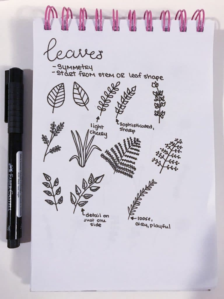 botanical line art