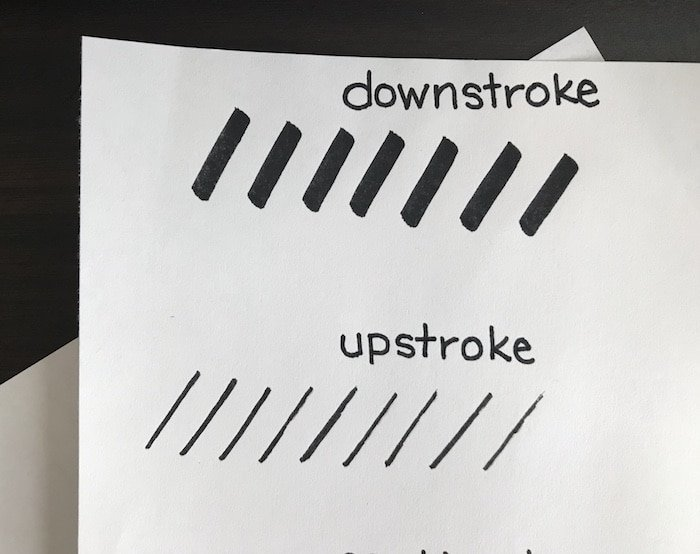 Upstrokes and downstrokes for brush lettering