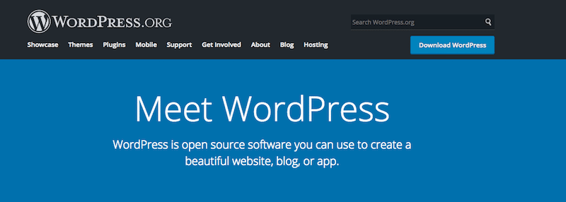 The Importance of a Self-Hosted WordPress Site