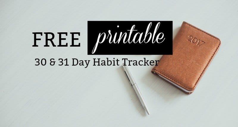 Free Printable A5 Habit Tracker for your Bullet Journal