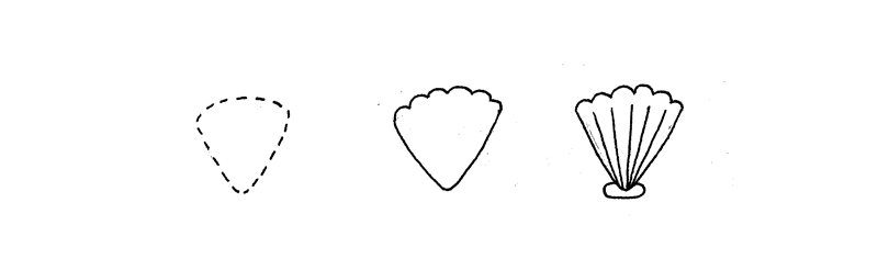 How to Doodle Seashells