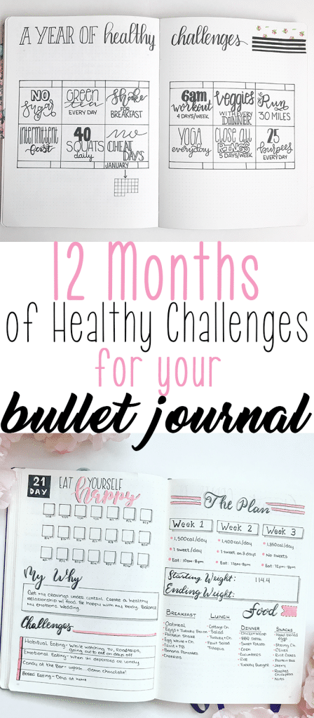 12 Months of HealthyChallenges to Add Into Your Bullet Journal