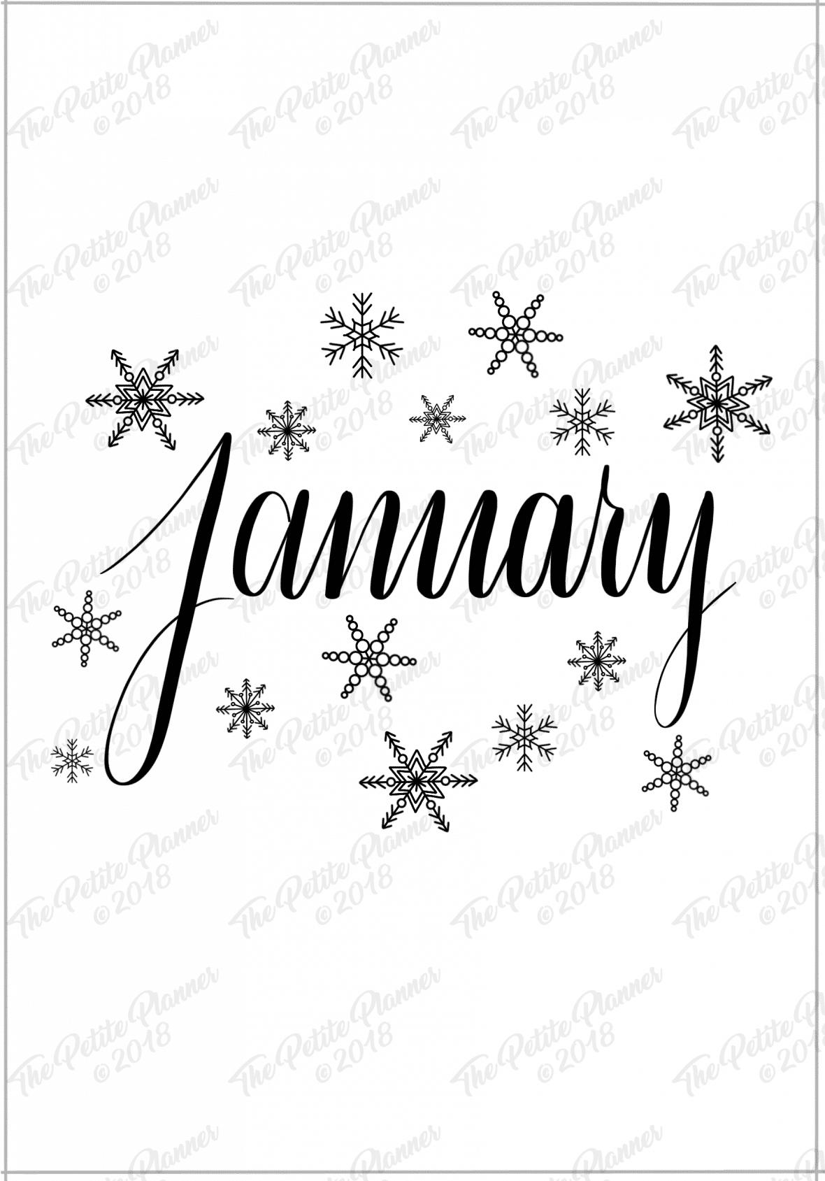 january 2019 bullet journal setup
