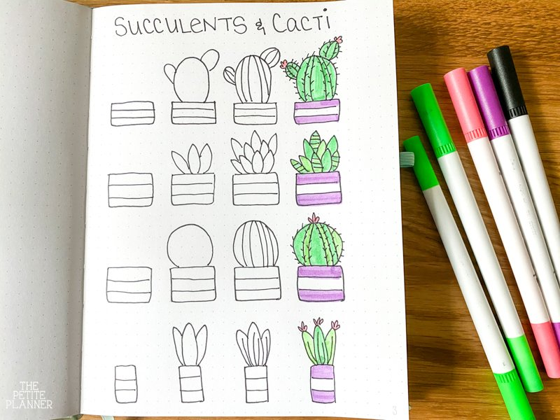 Bullet journal step by step drawings of a cactus and succulents
