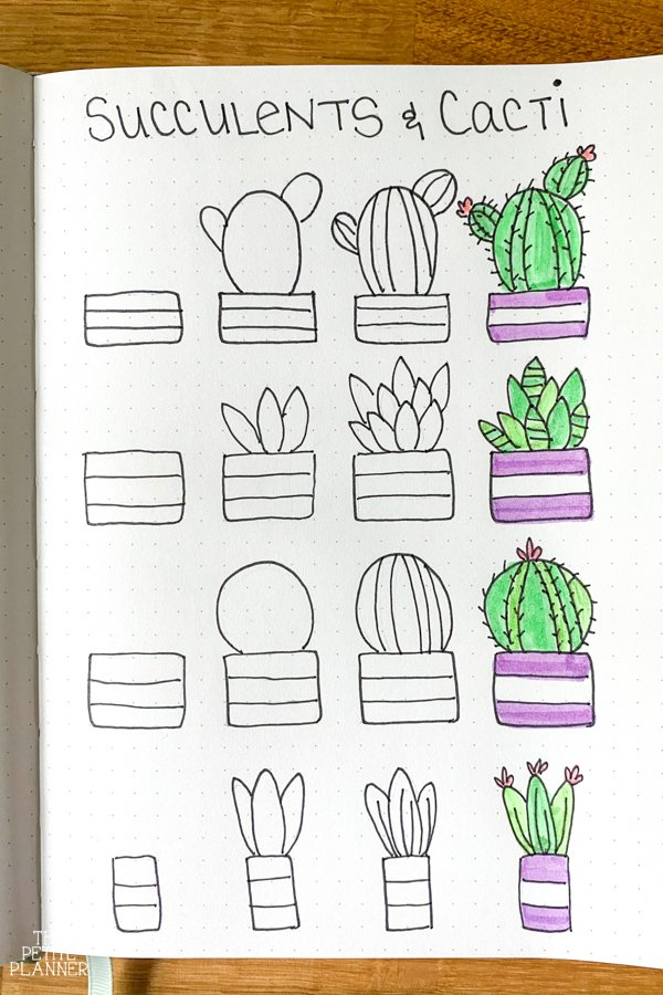 Step by step tutorial for how to draw cute succulents and cacti plants
