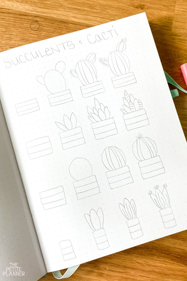 Drawing tutorial for succulents doodles
