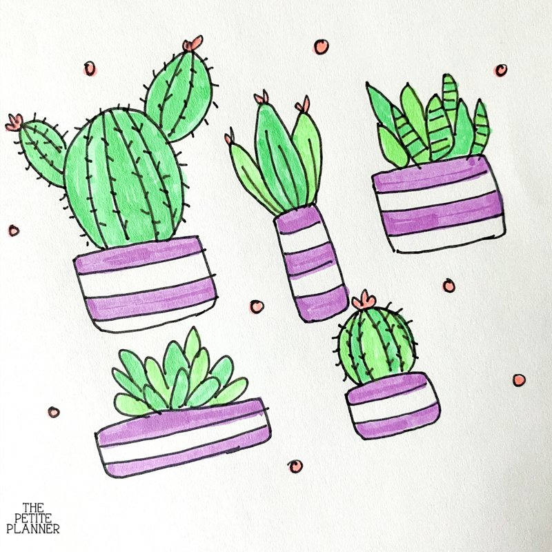 Cute succulents and cacti doodles