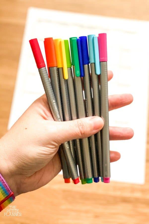 Hand holding Staedtler Triplus Fineliner Pens